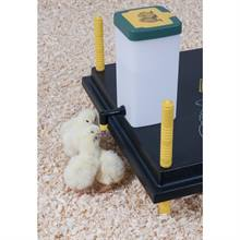 560312-chick-drinker-1l-with-hinged-lid-and-mounting-bracket.jpg