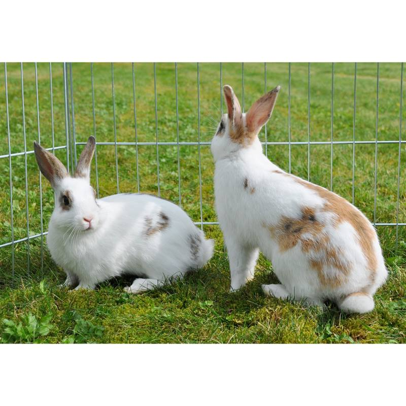 26200-6-voss.pet-rabbit-pen-60cm-high-hexagonal.jpg