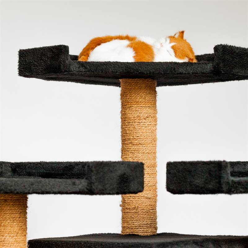 26613-7-voss.pet-karate-cat-katzen-kratzbaum-schwarz.jpg