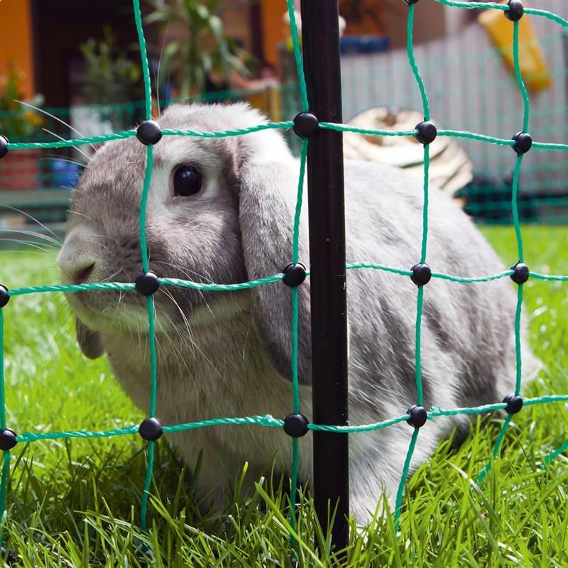 27222-12m-voss-minipet-small-animal-netting-65cm-green-1-spike-3.jpg