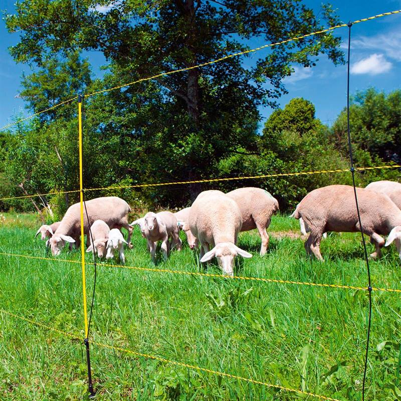 27266-50m-ako-easynet-sheep-netting-with-distance-to-ground-105cm-1-spike-4.jpg