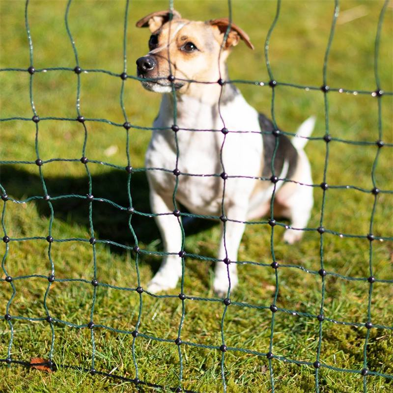 27710-7-voss.pet-hundstangsel-valpstangsel-valphage-utomhus-kaninhage-kaningard.jpg