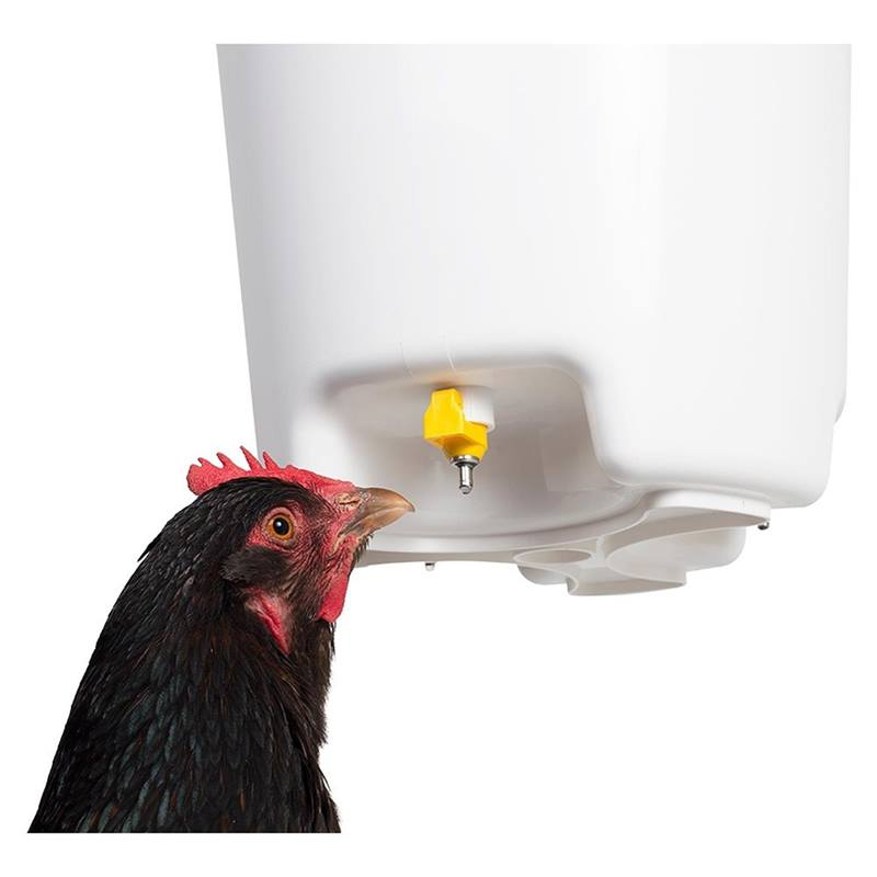 560315-bucket-nipple-waterer-poultry-drinker-12-l-4.jpg