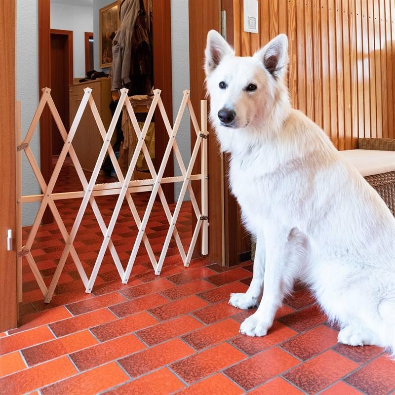 67905-3-vikbar-hundgrind-typ-dragspelsgrind-säkerhetsgrind-hund-barngrind-skyddsgrind-i-trä.jpg